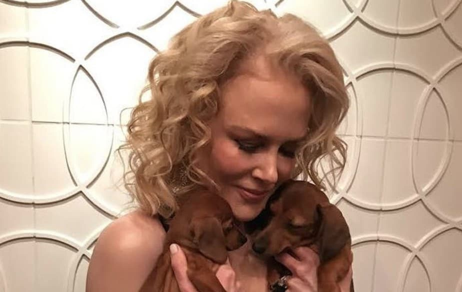 Foto Nicole Kidman